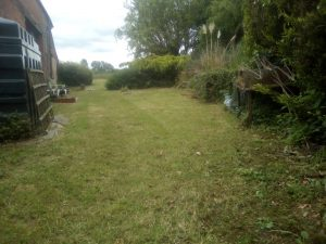 Grounds & Gardens grass cutting service SOUTH norfolk NORTH suffolk
