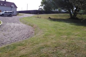 grass cutting in waveney area bungay beccles