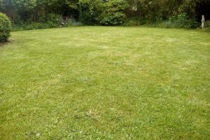 "Grounds & Gardens ""All Your Garden Needs"" Poringland Norfolk grass cutting and lawn care"