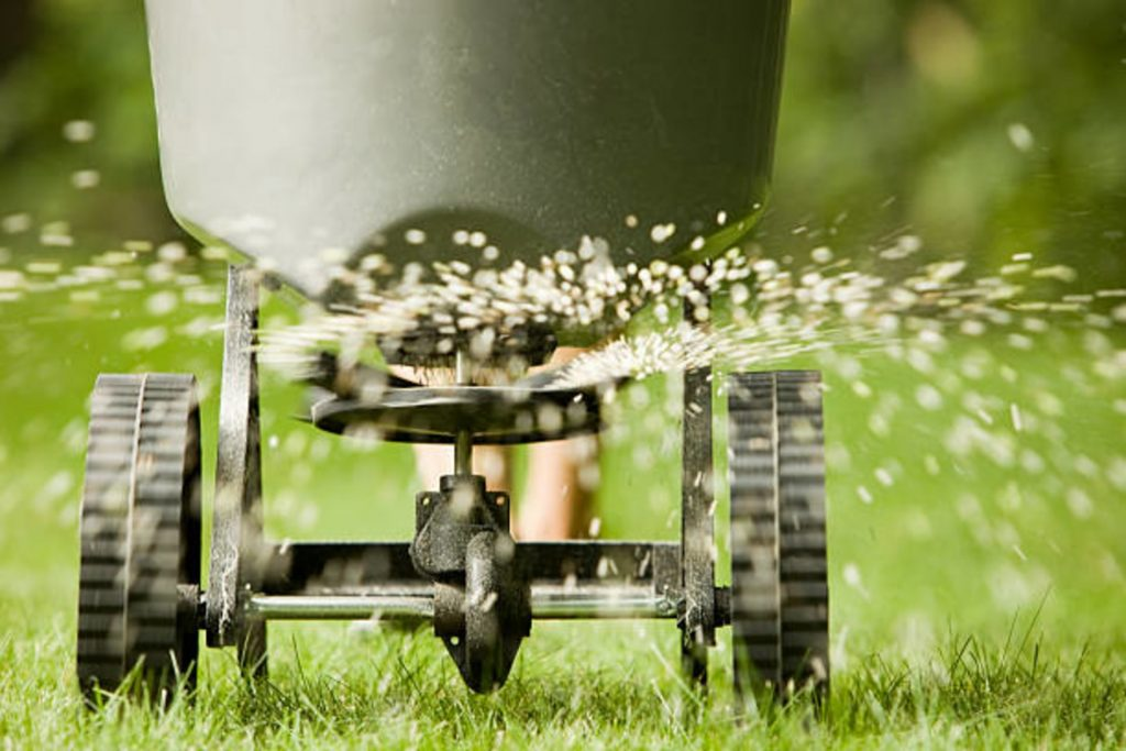 Lawn care programs Bungay,Beccles ,Waveney Valley,South Norfolk,North Suffolk