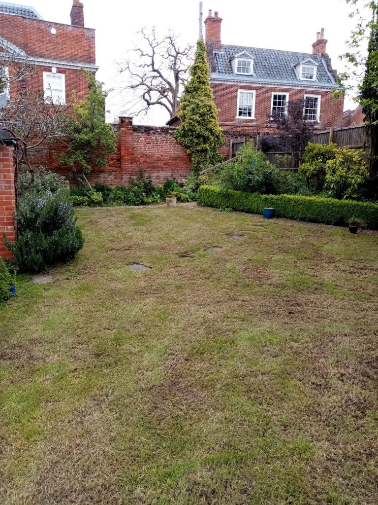 Lawn care after in Beccles Waveney Suffolk