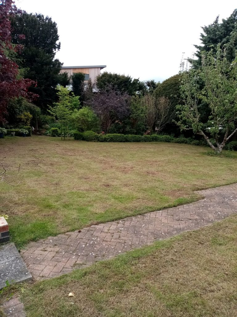 Lawn care in Beccles after wards