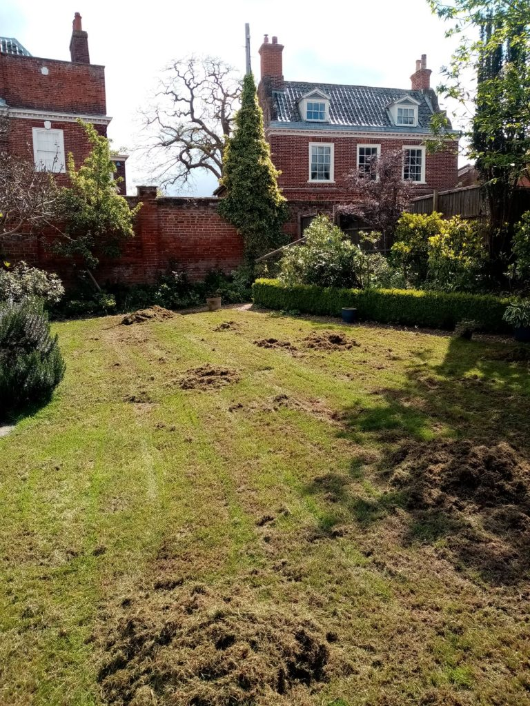 During Lawn care in Beccles