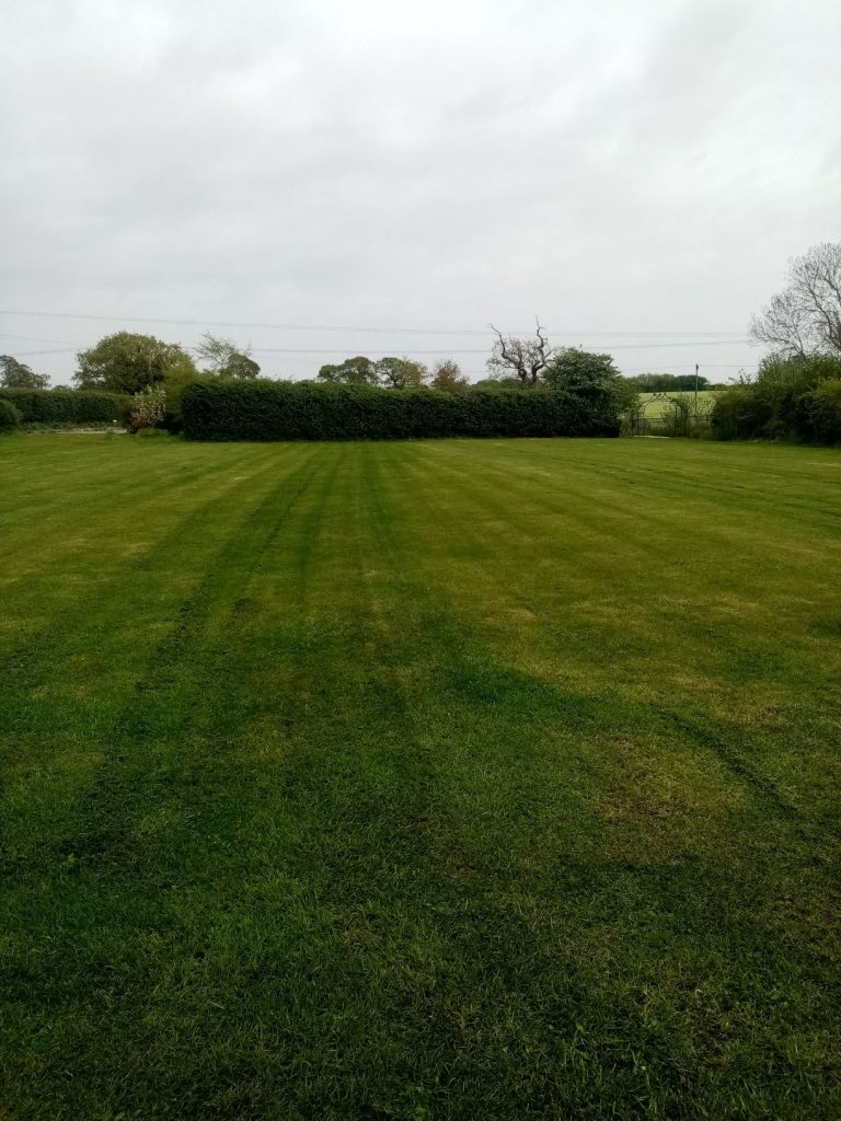 Grass cutting-Lawn care in Beccles Suffolk