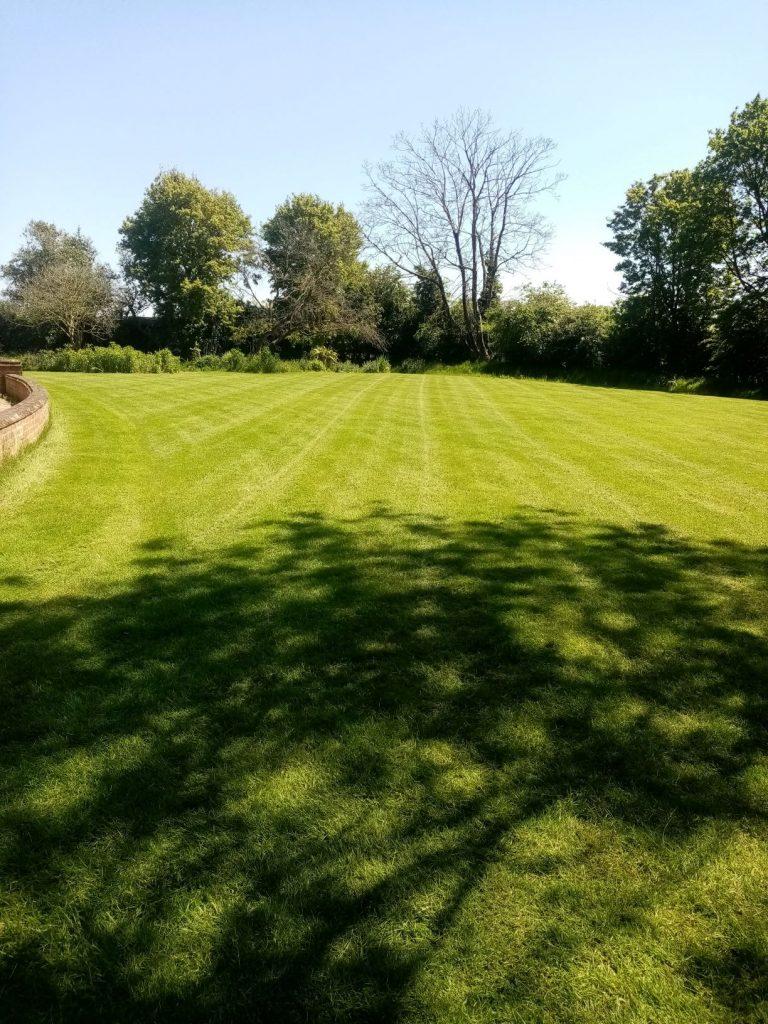 Grass cutting Suffolk