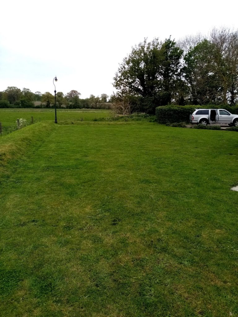 Lawn care in Beccles 4 weeks after topdressing and over seeding