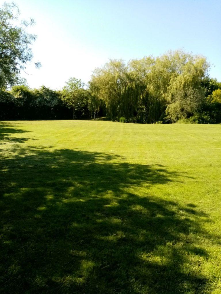 Grass cutting Hedenham Norfolk