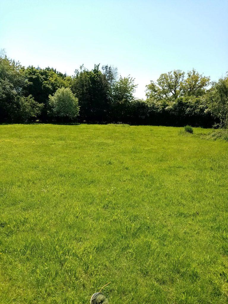 Lawn needs cutting? Grass cutting Norfolk
